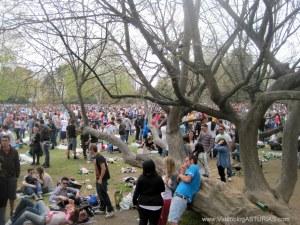 Muchedumbre Comida en la calle en Parque Ferrera,  Avilés, desde árboles tumbados