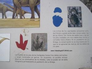Playa de La Griega: Cartel informativo de los dinosaurios