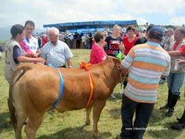 Boda y Festival Vaqueiro: Chiringuitos Braña Aristebano